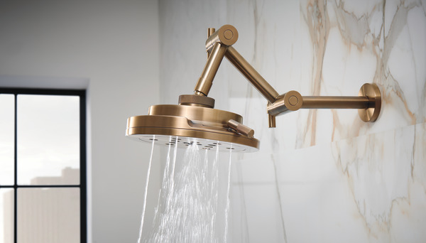 Brizo Shower head