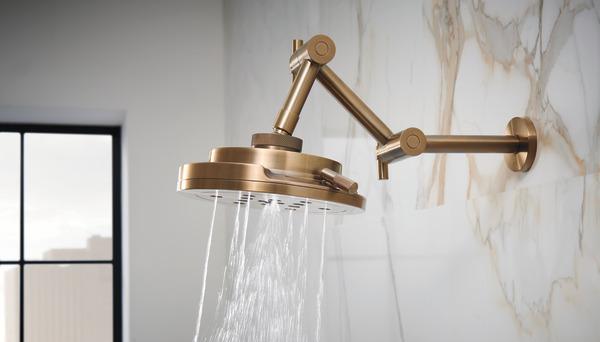 Brizo Shower head